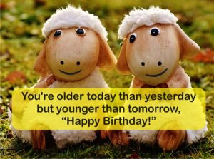 funny happy birthday images NBW2
